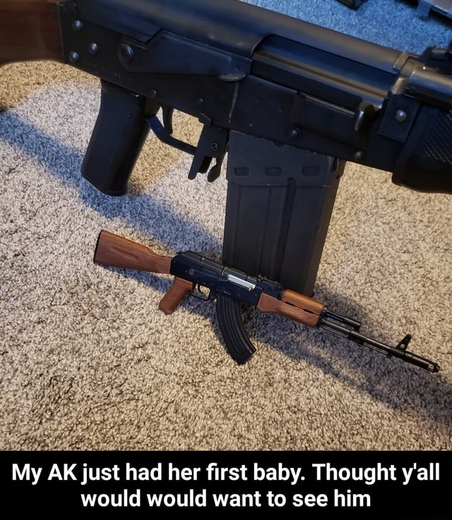 My AK just had her first baby. Thought y'all would would want to see him My AK just had her first baby. Thought y'all would would want to see him memes