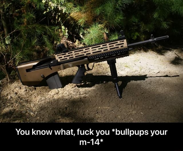 You know what, fuck you *bullpups your m 14* You know what, fuck you *bullpups your m 14* meme