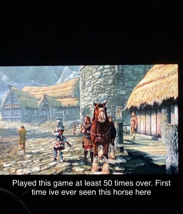 Played this game at least 50 times over. First time ive ever seen this horse here meme