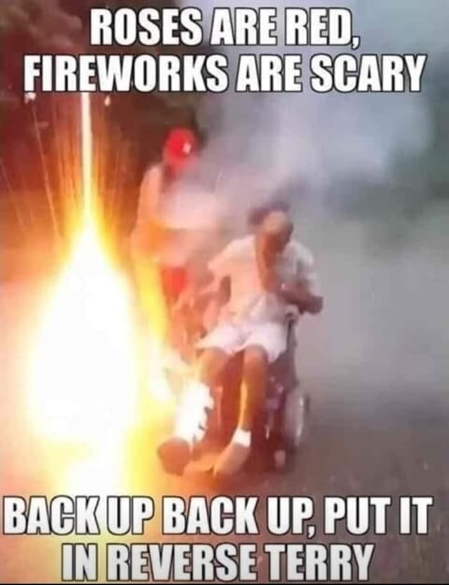 ROSES ARE RED. FIREWORKS ARE SCARY REVERSE TERRY meme
