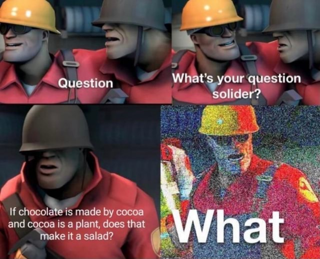 Question If chocolate is made by cocoa and cocoa is plant, does that make it salad What's your question solider What memes