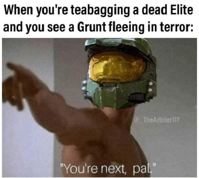 When you're teabagging a dead Elite and you see a Grunt fleeing in terror You're next, pal memes
