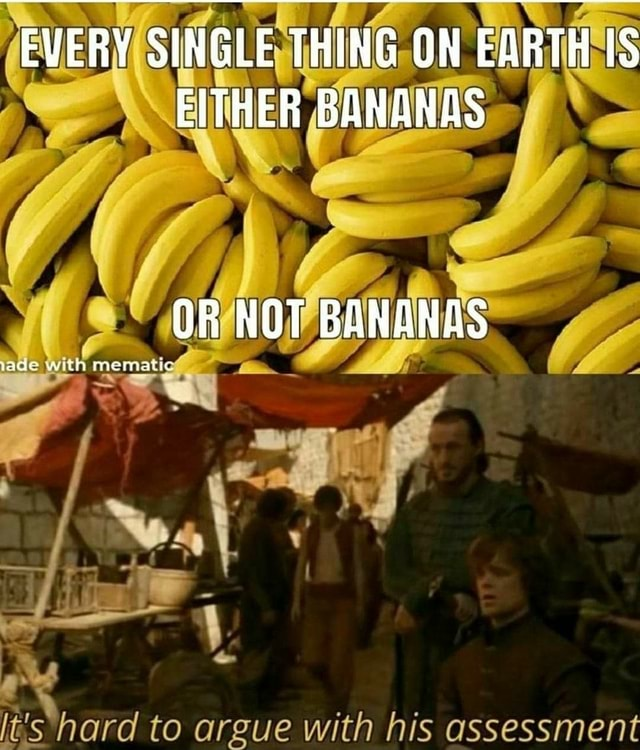 EVERY SINGLE THING ON EARTH IS EITHER BANANAS OR NOT BANANAS get t's hard to argue with his assessment meme