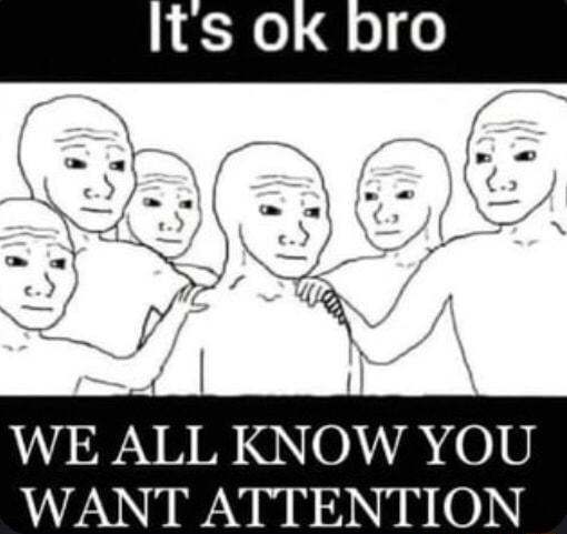 OK bro TY WE ALL KNOW YOU WANT ATTENTION memes