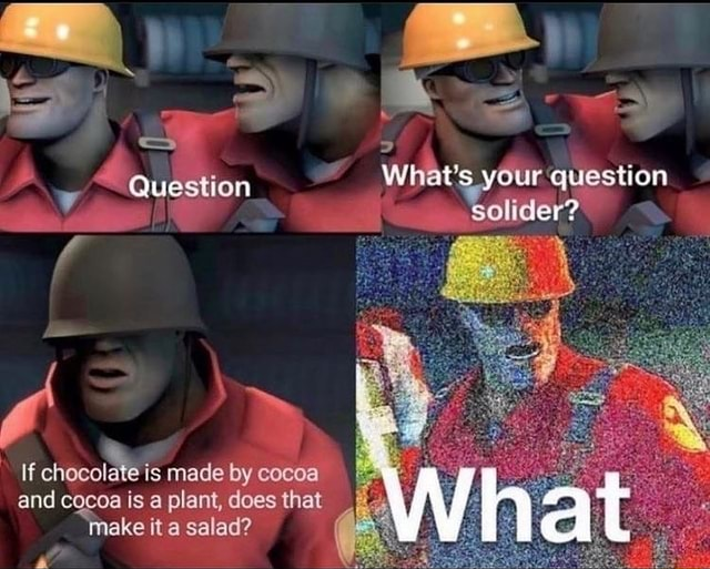 What's your question Solider Question If chocolt is made by cocoa and cocoa is a plant, does that ake it a salad meme