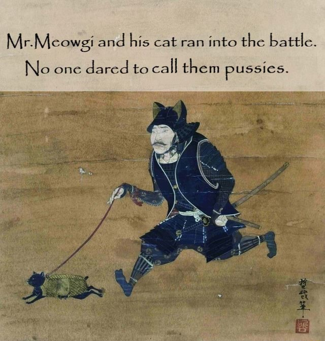 Mr.Mcowgi and his cat ran into the battle. No one dared to call them pussies memes