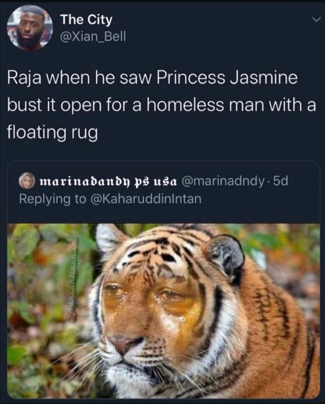 And The City xXian Bell Raja when he saw Princess Jasmine bust it open for a homeless man with a floating rug marinadandy ps usa marinadndy Replying to KaharuddinIntan meme