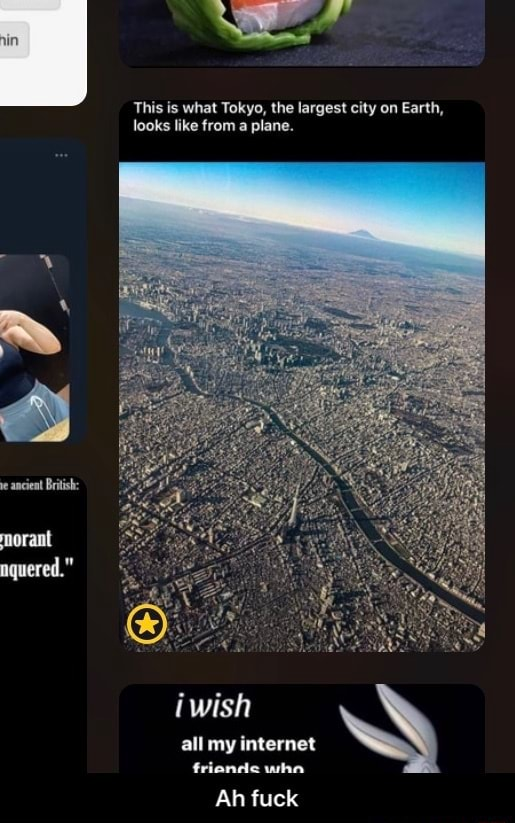 This is what Tokyo, the largest city on Earth, looks like from a plane. wish all my internet friande wha Ah fuck  Ah fuck memes