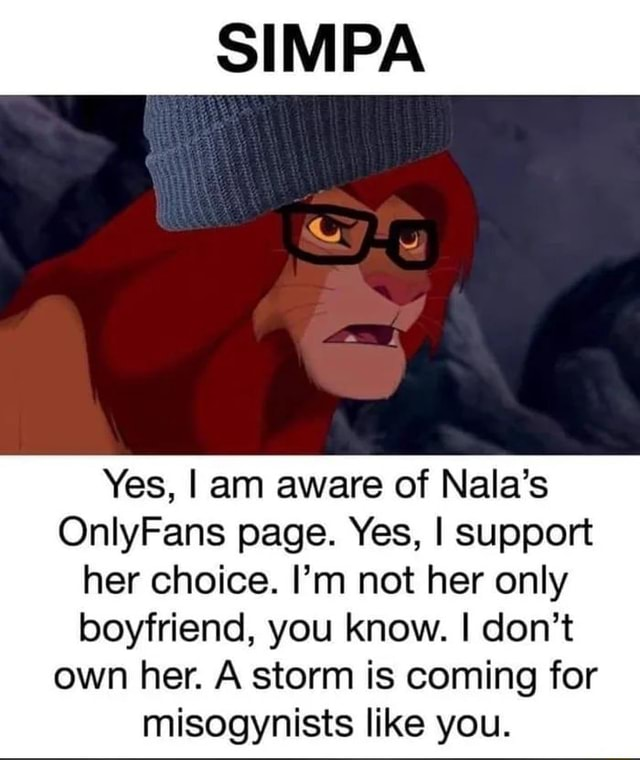 SIMPA SS Yes, I am aware of Nala's OnlyFans page. Yes, I support her choice. I'm not her only boyfriend, you know. I do not own her. A storm is coming for misogynists like you meme