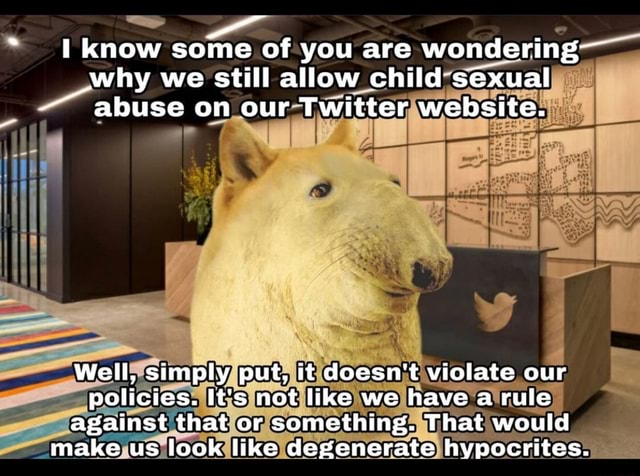 Know some of you are wondering why we still allow child sexual abuse on our Twitter website. Well, simply put, it doesn't violate our policies. It's not like we have a rule against that or something. That would make us look like degenerate hypocrites memes