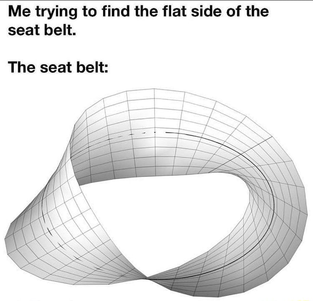 Me trying to find the flat side of the seat belt. The seat belt memes