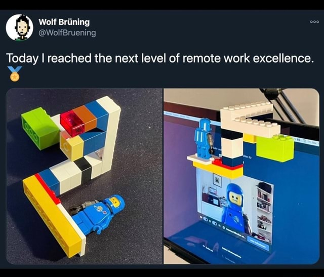 Wolf Brining Today I reached the next level of remote work excellence meme