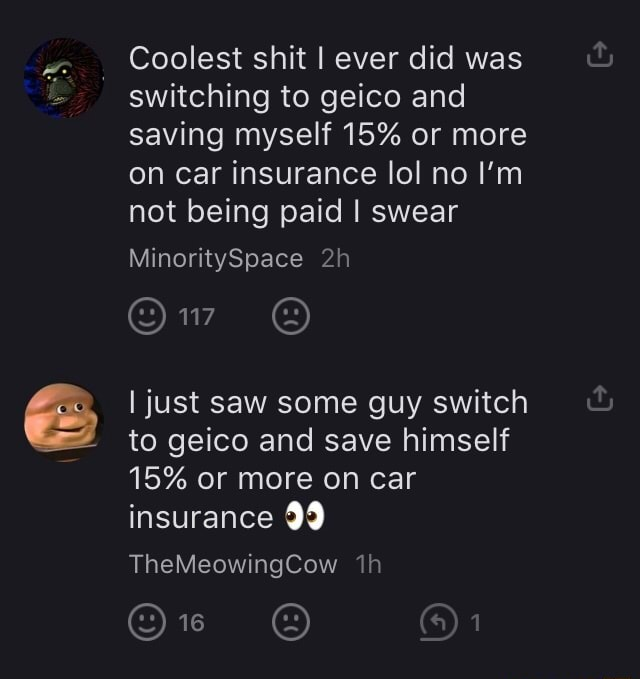 Coolest shit I ever did was switching to geico and saving myself 15% or more on car insurance lol no I'm not being paid I swear MinoritySpace Ow I just saw some guy switch to geico and save himself 15% or more on car insurance 99 TheMeowingCow O on memes