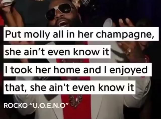 Put molly all in her champagne, she ain't even know it took her home and I enjoyed I that, she ain't even know it ROCKO U.0.E.NLO meme