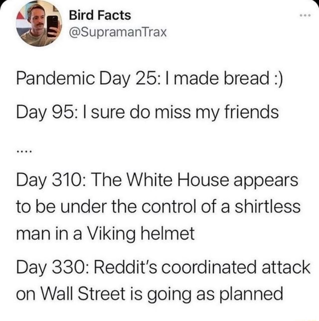 And  GG Bird Facts Supramantrax Pandemic Day 25 I made bread Day 95 I sure do miss my friends Day 310 The White House appears to be under the control of a shirtless man in a Viking helmet Day 330 Reddit's coordinated attack on Wall Street is going as planned memes