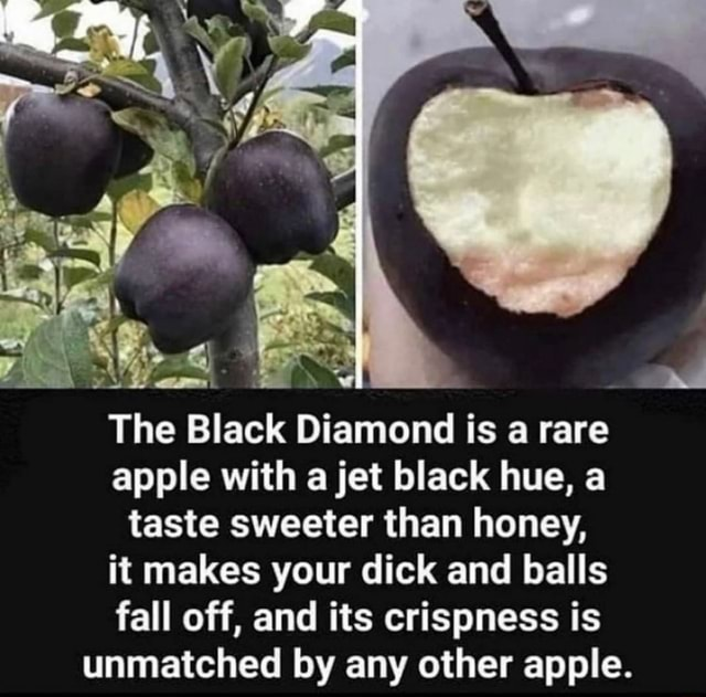 LL The Black Diamond is a rare apple with a jet black hue, a taste sweeter than honey, it makes your dick and balls fall off, and its crispness is unmatched by any other apple meme