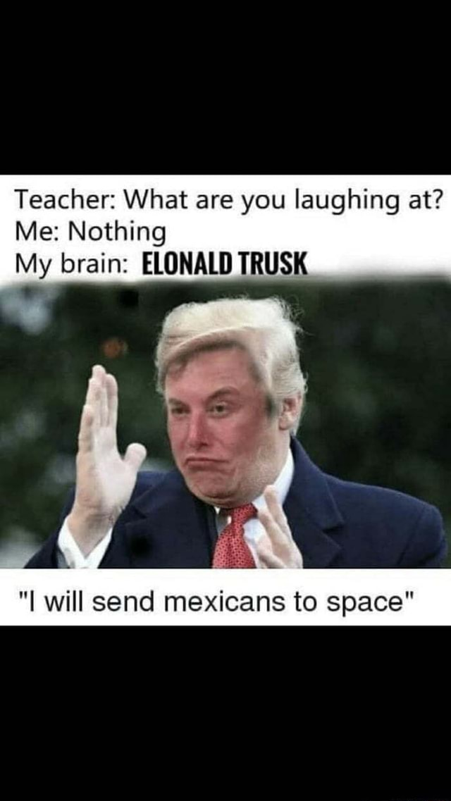 Everybody was king fu fighting Teacher What are you laughing at Me Nothing My brain ELONALD TRUSK I will send mexicans to space memes