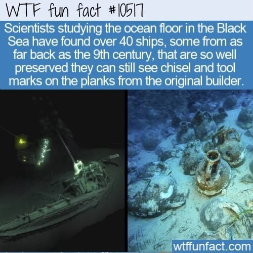 WTF fun fact 10517 Scientists studying the ocean floor in the Black Sea have found over 40 ships, some from as far back as the century, that are so well preserved they can still see chisel and tool marks on the planks from the original builder. com meme