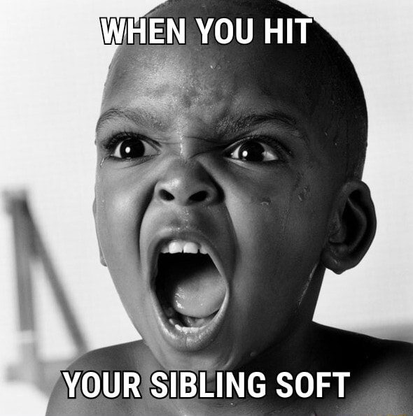 WHEN YOU HIT YOUR SIBLING SOFT memes