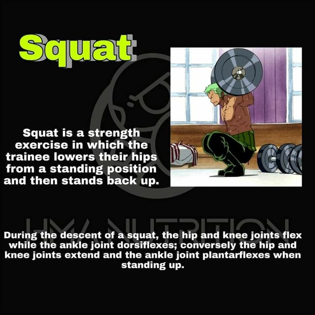 Squat Squat is a strength exercise in which the trainee lowers their hips I from a standing position and then stands back up. During the descent of a squat, the hip and knee joints flex while the ankle joint dorsiflexes conversely the hip and knee joints extend and the ankle joint plantarflexes when standing up memes
