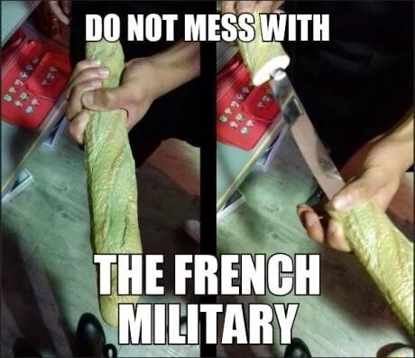 DO NOT MESS WITH THE FRENCH MILITARY meme