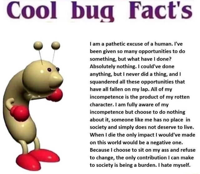 Cool bug Fact's ww lam a pathetic excuse of a human. I've been given so many opportunities to do something, but what have I done Absolutely nothing. I could've done anything, but I never did a thing, and squandered all these opportunities that have all fallen on my lap. All of my incompetence is the product of my rotten character. I am fully aware of my incompetence but choose to do nothing about it, someone like me has no place in society and simply does not deserve to live. When die the only impact I would've made on this world would be a negative one. Because I choose to sit on my ass and refuse to change, the only contribution I can make to society is being a burden. hate myself memes