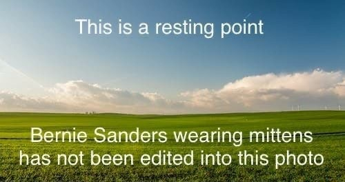 This is resting point Bernie Sanders wearing mittens has not been edited into this photo meme