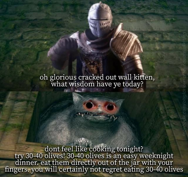 Oh glorious cracked out wall kitten, what wisdom have ye today dont feel like cooking tonight try 30 40 olives 30 40 olives is an easy weeknight dinner. eat them directly out of the jar with your fingers. you will certainly not regret eating 30 40 olives memes