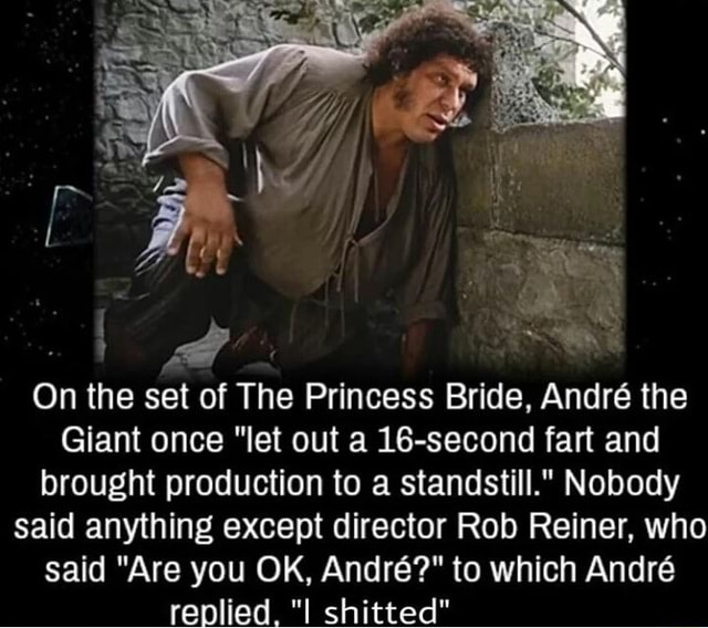 On the set of The Princess Bride, Andre the Giant once let out a 16 second fart and brought production to a standstill. Nobody said anything except director Rob Reiner, who said Are you OK, Andre to which Andre replied, I shitted memes