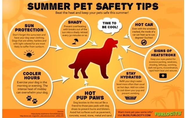 SUMMER PET SAFETY TIPS Beat the heat and keep your pets safe this summer SHADY TIME TO HOT CAR sun into a shady retreat cracked, the inside of a SUN Prevent overheating PROTECTION with breaks out of the Even with the windows Do not forget the sunscreen and have your dog wear clothing. Dogs that are white, hairless and with light colored fur are most likely to suffer from sunbumn. COOLER HOURS Exercise your dog in the morning or evening. The intense heat of midday can overwhelm your dog every 30 minutes or so. bow more often than usual con hot days. Add ice cubes to cool down your pup and HOT prevent vomiting. PUP PAWS ey Dog booties to the rescue Be friend to those paw pads with dog shoes to prevent burns and blisters. Avoid hot surfaces such as pavement, concrete, wood, stone, metal and s