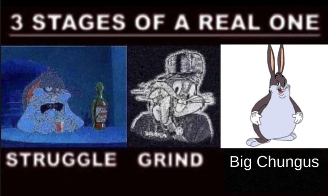 3 STAGES OF A REAL ONE STRUGGLE GRIND Big Chungus meme