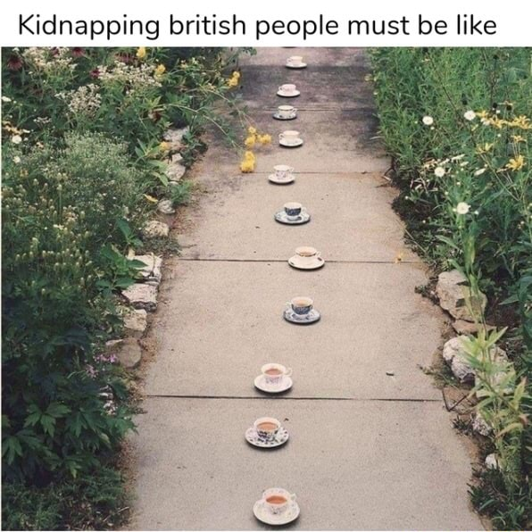 Kidnapping british people must be like must be like memes