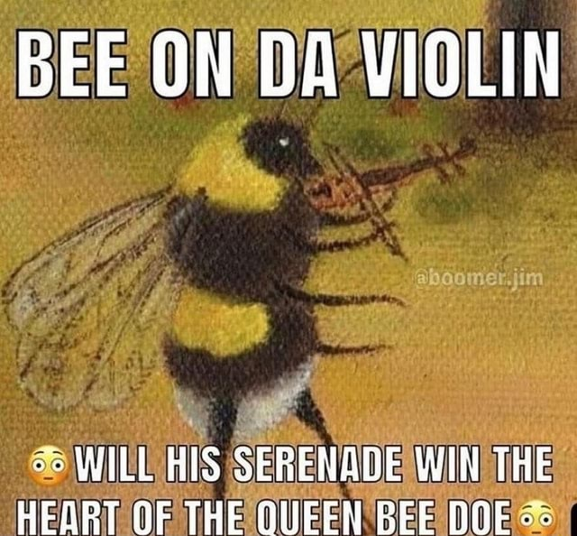 BEE ON DA VIOLIN o WILL HIS SERENABE WIN THE HEART OF THE QUEEN BEE OOF meme