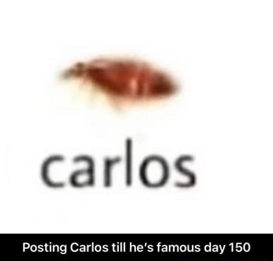 Carlos Posting Carlos till he's famous day 150 Posting Carlos till he's famous day 150 meme