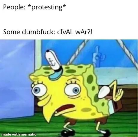 People *protesting* Some dumbfuck cIvAL wAr AN meme