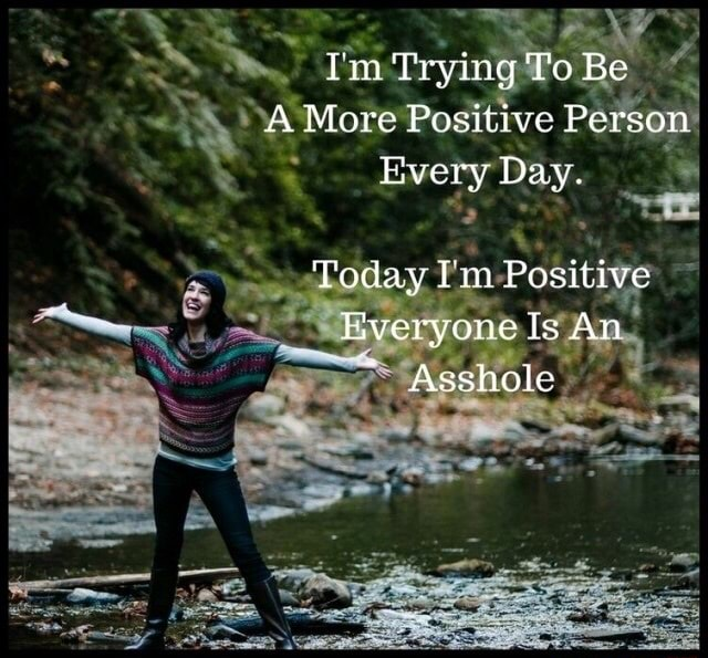 'Prying lo Be A More Positive Person Every Day. Today Tin Positive Everyone Is An Asshole memes