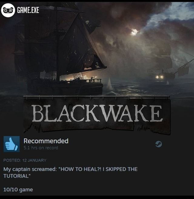 GAME. EXE BLACK WAKE Recommended 5.1 hrs on record POSTED 12 JANUARY My captain screamed HOW TO HEAL I SKIPPED THE TUTORIAL game memes