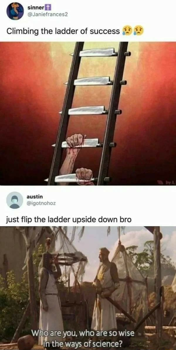 Sinned Climbing the ladder of success austin just flip the ladder upside down bro wile are you, the who ways of are SO WiSe science in the ways of science memes