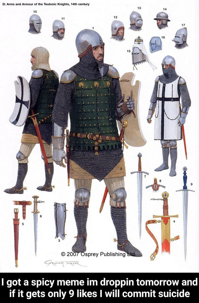 D Arms and Armour of the Teutonic Knights, 14th century 2007 Osprey Publishing Cyqunsin Toawer got a spicy meme im droppin tomorrow and if it gets only 9 likes I will commit suicide I got a spicy meme im droppin tomorrow and if it gets only 9 likes I will commit suicide