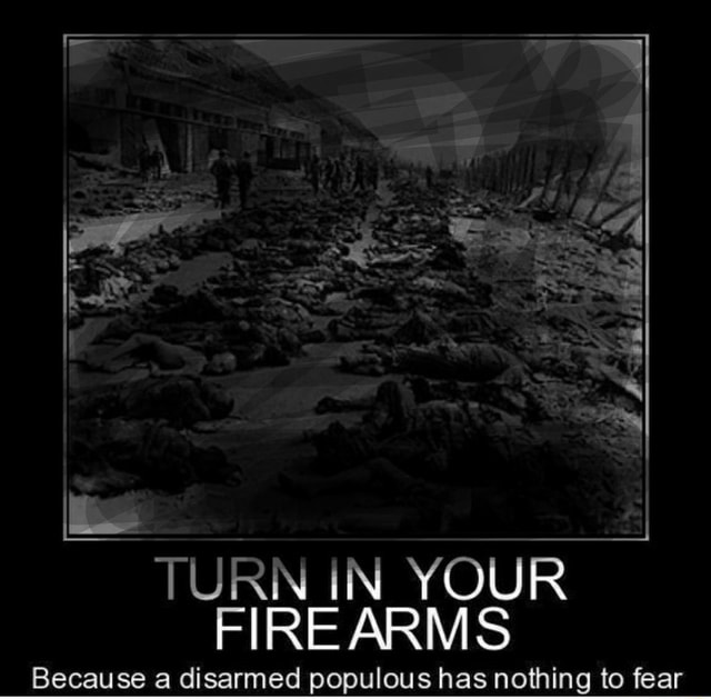 Say TURN IN YOUR FIREARMS Because a disarmed populous has nothing to fear meme