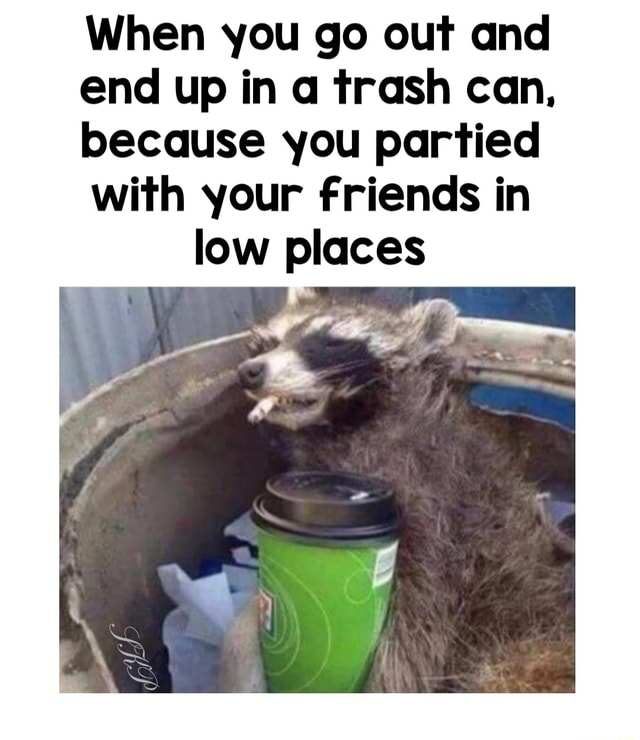 When you go out and end up in trash can, because you partied with your friends in low places memes