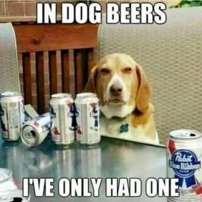 IN DOG BEERS I'VE ONLY HBD ONE meme