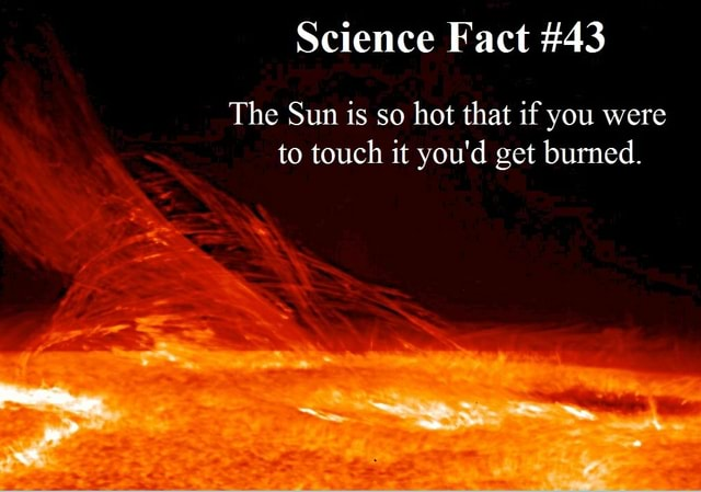 Science Fact 43 The Sun is so hot that if you were to touch it you'd get burned meme