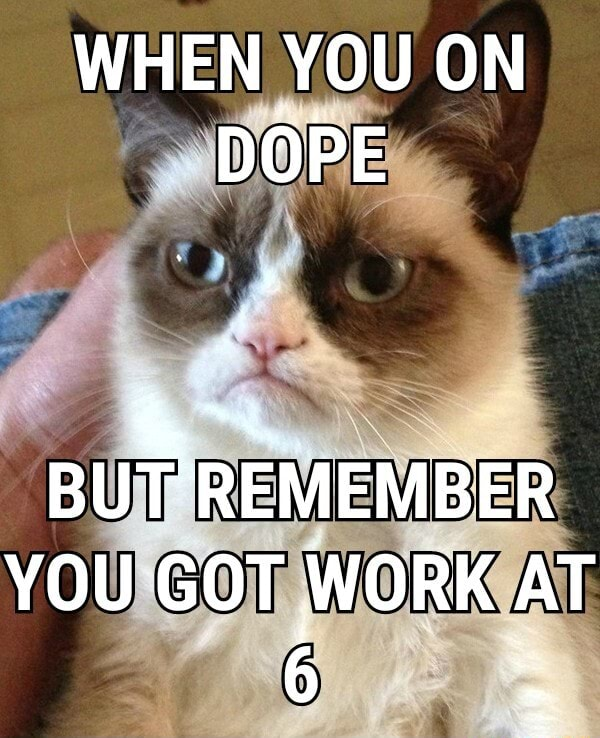 WHEN YOU ON DOPE BUTT REMEMBER YOU GOT WORK AT 6 memes