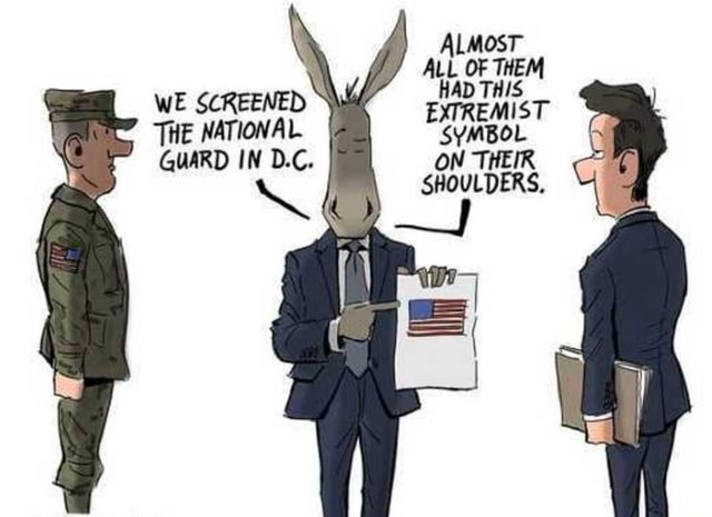 ALMOST ALL OF THEM WE SCREENED THE NATIONAL SYMBOL GUARD IN D.C meme