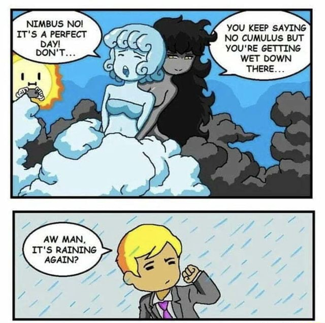 Already enjoyed rain ,This just made it better NIMBUS NO YOU KEEP SAYING IT's PERFECT NO CUMULUS BUT YOU'RE GETTING WET DOWN THERE AW MAN, IT'S RAINING AGAIN meme