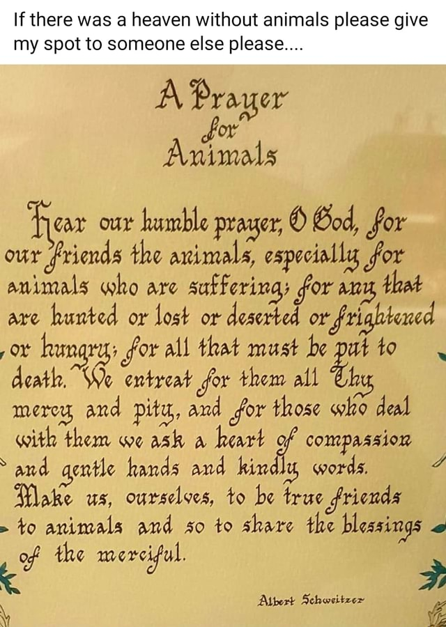 If there was a heaven without animals please give my spot to someone else please Prayer Animals Fear our humble prayer, God, for our friends the animals, especially for animals who are sufferings for anu, that are hunted or lost or deserted or frightined hungry for all that must be pat to death. We entreat for them all merey, and pity, and for those who deal with them we ask a heart of compassion and gentle hands and hindlu words. Make us, ourselves, to be true friends to animals and so to share the blessings of the merciful. Albert Schweitzer memes