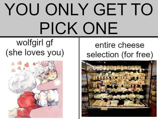 YOU ONLY GET TO PICK ONE woligirl of entire cheese she loves you selection for free memes