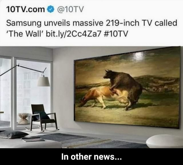 10TV Samsung unveils massive 219 inch TV called The Wall 10TV In other news In other news memes