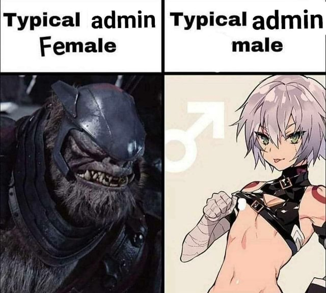 Typical admin male Typical admin Female memes
